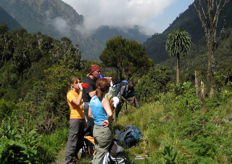 rwenzori activities